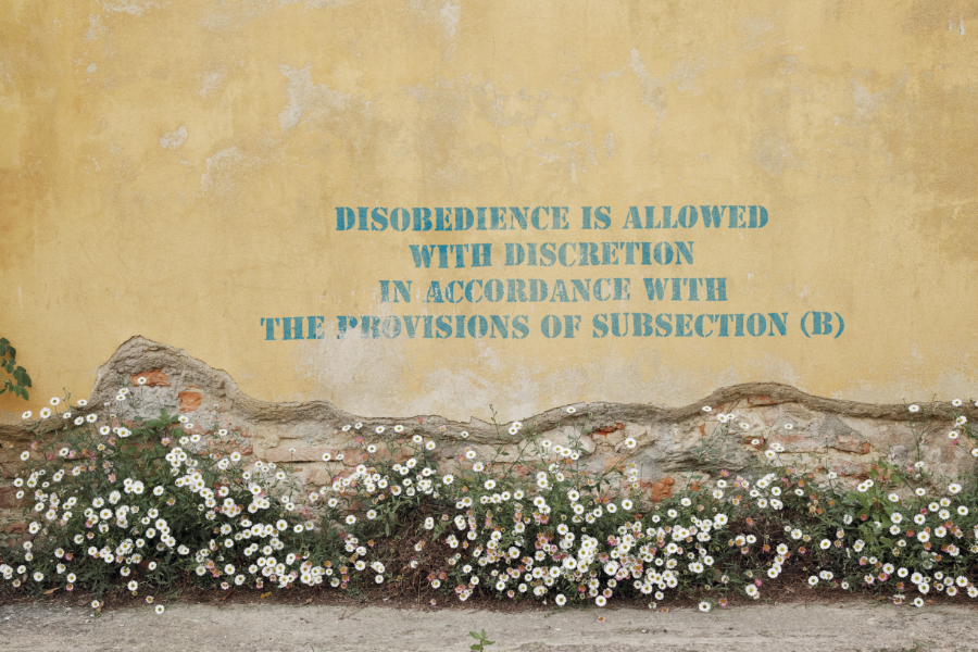 Disobedience is Allowed